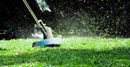 Výsadba trávníku - postup jak na to